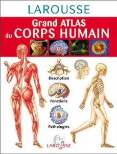 atlas_corps_humain